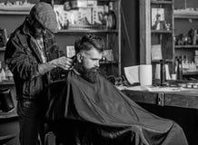 Fryzjer męski z włosianym cążki pracuje na ostrzyżeniu brodaty facet, retro zakładu fryzjerskiego tło Modniś fryzury pojęcie obrazy royalty free