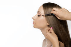 Fryzjer poza ekranem gręple włosiane piękna dziewczyna Zdjęcie Stock