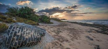 Fryzjera męskiego punkt Hawaje Fotografia Royalty Free