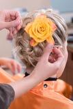fryzjera pióropusz robi Fotografia Royalty Free