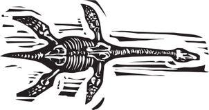 Fósil del Plesiosaurus Fotografía de archivo