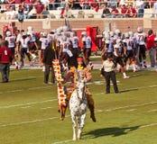 FSU的首要Osceola骑马叛教者 库存图片