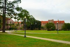 FSU campus landscape. Campus landscape at Florida State University Royalty Free Stock Image