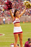 FSU-Cheerleader Stockbild