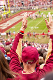 FSU Fan Royalty Free Stock Photo