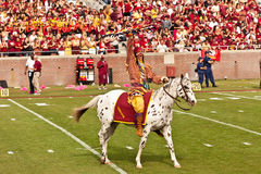 FSU's Chief Osceola. Tallahassee, Florida - October 27, 2012:  Chief Osceola, riding Renegade, gets the crowd going prior to the football game between Florida Royalty Free Stock Image