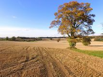 Drone still image of the Sussex countryside. Stock Photography