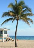 Ft Lauderdale Beach. Beach Lifeguard tower with Caribbean blue water in the background and palm tree in the foreground Stock Photography