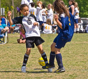 Fútbol de las chicas jóvenes Fotografía de archivo libre de regalías
