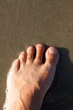 Fuß Stockfoto
