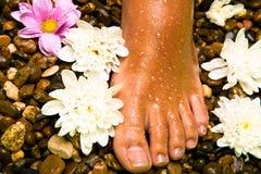 Fuß auf einem Steinstrand mit Blumen lizenzfreies stockbild