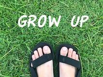 Fuß auf grünem Gras lizenzfreie stockfotos
