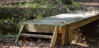 Fuß-Brücke Stockbild