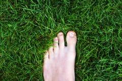 Fuß, der im hellgrünen Gras steht Lizenzfreies Stockbild
