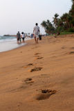 Fuß-Drucke im Sand Stockbild