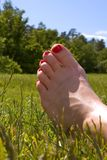 Fuß im Gras Lizenzfreie Stockfotografie