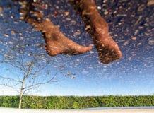 Fuß im Himmel Lizenzfreies Stockfoto