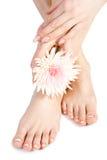 Fuß und Hand der Frau mit Blumen auf Weiß Lizenzfreies Stockbild
