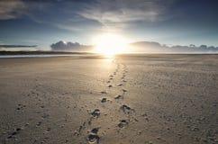 Fußbahnen zum Sonnenschein auf Horizont stockfoto