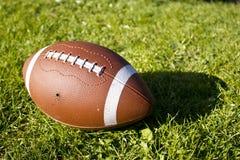 Fußball auf dem Gras Lizenzfreies Stockbild