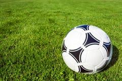 Fußball auf einem Grasfußballplatz Stockfotografie