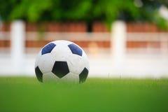 Fußball auf Feld des grünen Grases Stockfoto