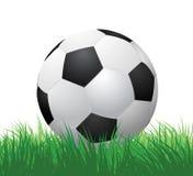 Fußball auf grünem Gras lizenzfreie abbildung
