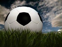 Fußball auf Gras Stockbilder