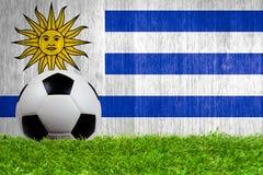 Fußball auf Gras mit Uruguay-Flaggenhintergrund Lizenzfreies Stockbild