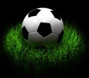 Fußball auf Illustration des Grases 3D Lizenzfreies Stockfoto