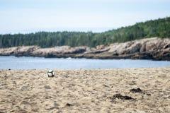 Fußball auf Strand Lizenzfreie Stockfotos