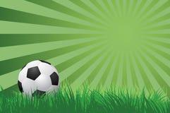Fußball auf Vektorillustration des grünen Grases stock abbildung