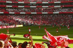 Fußball Crowd_Football-Meister Party_Benfica-Stadion Stockfotografie