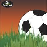 Fußball, der im Gras liegt Fußball Lizenzfreie Stockfotos