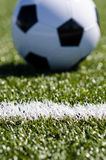 Fußball, der im Gras sitzt Lizenzfreie Stockfotos