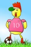 Fußball des jungen Geflügeltiers Stockbilder