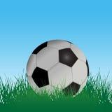 Fußball-Fußball auf dem Gras-Gebiet Stockbild