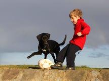 Fußball-Hund und Junge lizenzfreie stockfotos