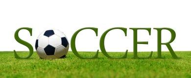Fußball im Gras lizenzfreie stockbilder