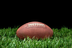 Fußball im Gras Stockbild