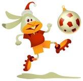 Fußball-Kaninchen Stockbild