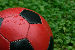 Fußball-Kugel stockfotos