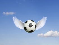 Fußball Lizenzfreies Stockbild