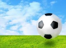 Fußballball auf dem Gras lizenzfreie stockbilder
