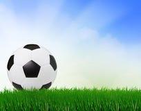 Fußballfußball auf grünem Feld mit Hintergrund des blauen Himmels stockbilder