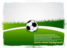 Fußballgrasfeld Lizenzfreies Stockfoto
