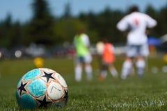 Fußballkugel auf Feld Stockfotos