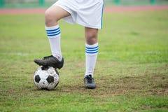 Fußballkugel auf Feld Stockbilder