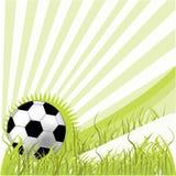 Fußballkugel auf grünem Gras Lizenzfreies Stockbild