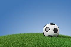 Fußballkugel auf Gras Lizenzfreie Stockbilder